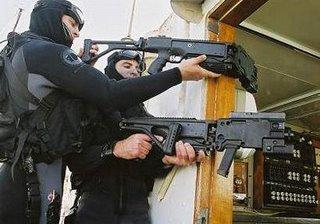 polnal2-armamento
